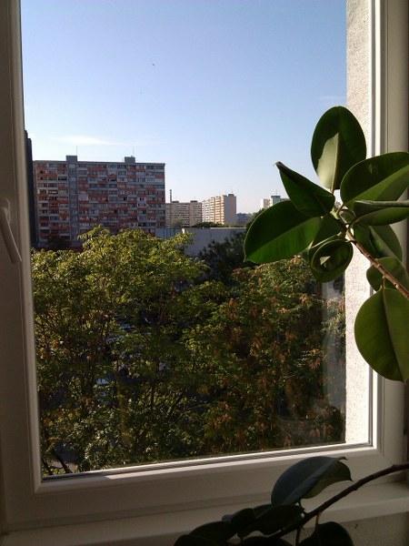 Umývanie okien pre firmy, domácnosti Bratislava1