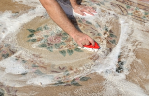 Která firma vyčistí koberce v našem městě